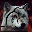 аватар 110x110. Волки